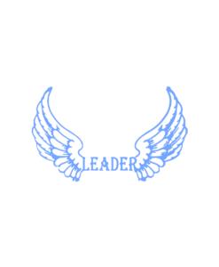 leader overlay